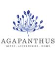 Agapanthus Lane