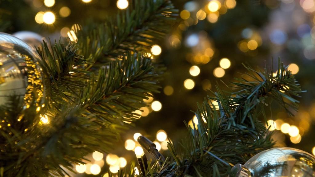 tree lighting pic for app